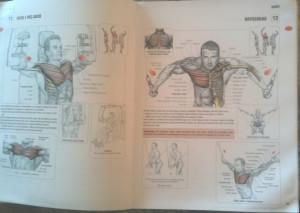 Styrketräning - En anatomisk guide av Frédéric Delaviers