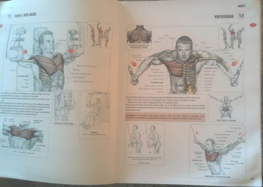 styrketräning för nybörjare bok